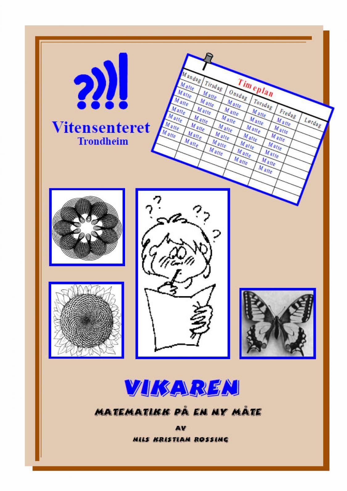 Vikaren - Matematikk på en ny måte